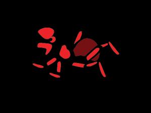Ant Sunshine Pest Management