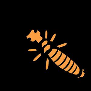 Sunshine Pest Managment Termite