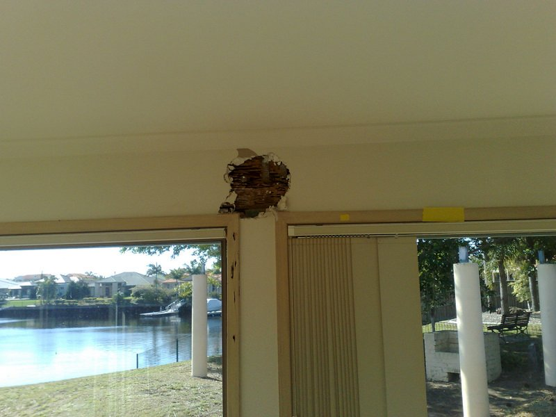 Property Inspection Terminte Barrier Sunshine Coast